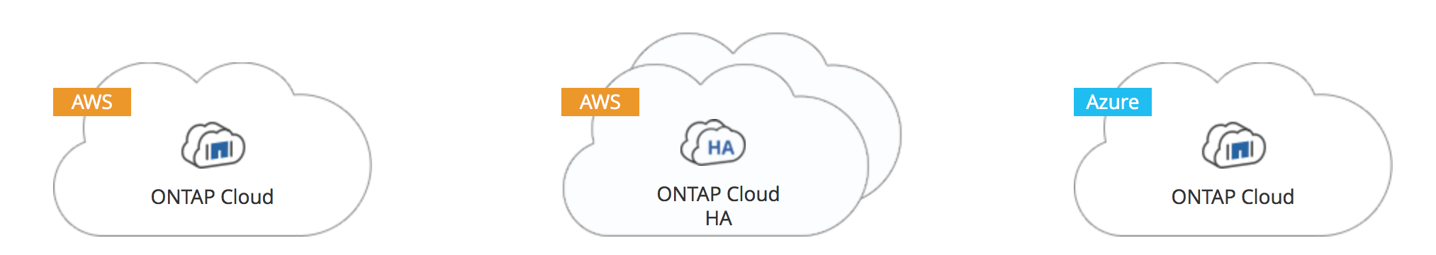 Introduction to ONTAP Cloud